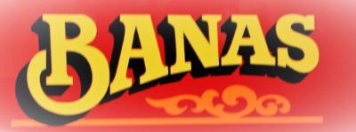 Banas Concrete Service logo