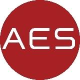 AES Professional Employer Organization logo