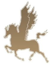 Pegasus Mortgage & Financial Solutions logo