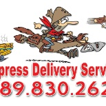 Express Delivery photo: