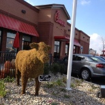 Chick-fil-A photo: 10315 Fremont Pike