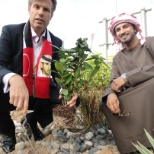 planting onion tree in UAE national day with our CEO