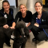 Some of our staff with a furry friend