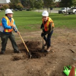 University of Guelph photo: Ginkgo tree planting at the new addition
