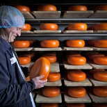 Emmi Roth USA photo: Our cellar team in Monroe, Wisconsin oversees the aging process of our cheeses.