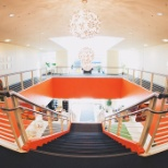 We work in a bright and open space in Redwood Shores