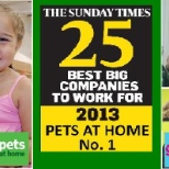 The Sunday Time Number 1 Best Big Company To Work For 2013
