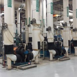 Primary and Secondary chilled water pumps