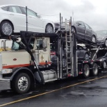 Cars being moved by Pasha Distribution Services