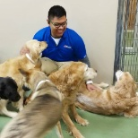 PetSmart photo: Play Time