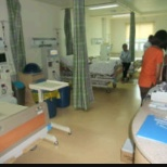 the hospital beds