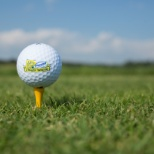 The Third Annual Alex's Lemonade Golf Outing and Picnic