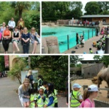 bwin.party digital entertainment photo: Our pro bono team organized a great trip to London Zoo last week for 30 children from KidsCompany