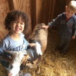 Children visit and take care of the goats at our Brandon campus.