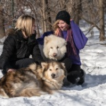 Home for Life Animal Sanctuary photo: Winter at Home for Life
