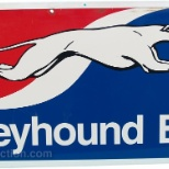 Greyhound photo: Greyhound