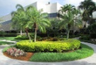 Another view of the lovely grounds at MSN's corporate offices