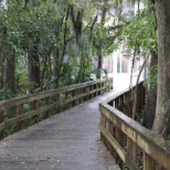 University of Florida photo: Scenic route