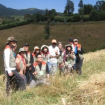 Korean visitors after harvesting wheat in for one of the CIP , April, 2010 Nono ADP, Ethiopia