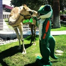 Celebrating Hump Day at our Macon, GA office!