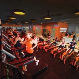 State of the Art Treadmills and WaterRowers