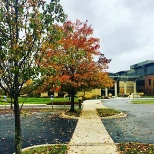 Fall time at headquarters