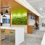 Open meeting and collaboration space next to welcoming moss wall at the Iron Mountain London office.