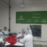 Home Chef photo: Our Production colleagues, working to fulfill every piece of our core values, posted above.