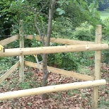 Building a tree guard to prevent the deer ruining the smaller saplings.