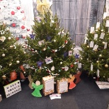 The SureCare Oxfordshire charity Christmas tree, supporting Carers Oxfordshire