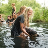 Home for Life Animal Sanctuary photo: cooling off and giving our old dogs some water therapy in the Apple River