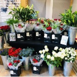 Happy Valentines Day from TTM in Manchester where we have been able to make up bunches of fresh rose