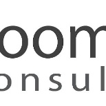 Boomers Consulting, LLC photo: Boomers Consulting, LLC provides clients with both Consultants and staffing/recruiting services.