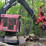 Integrity Tree Services Tracked Feller Buncher