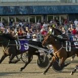 Woodbine Entertainment Group photo: Standardbred Race