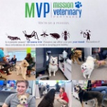 Mission Veterinary Partners Mission, Benefits, and Work