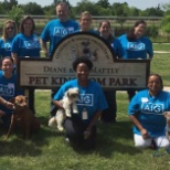 Recently, our employees helped homeless animals at CAP by cleaning and spending time with them.