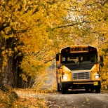 Sinton Transportation photo: Bus Autumn
