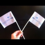 Flag Raising Ceremony- Flags for all team members!