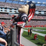 Gillette Stadium photo: Pat the Patriot gets into the crowd!