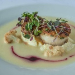 Seered Dayboat Sea Scallops with Cauliflower Moussaline Buerre Monte and reduced Beet Juices