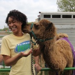 Did you know camels tell funny jokes?