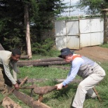 April  2010, Korean visitors to Nono ADP assisting in preparation of wood for nursery fencing.