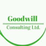 Goodwill Consulting Ltd