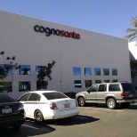 Cognosante, LLC photo: Cognosante office