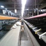 Employee sorting packes to proper loading docks to be sorted to their proper destinations