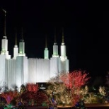 LDS Washington DC Temple at Christmas by night