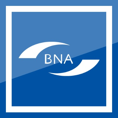 British Nursing Association logo