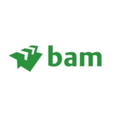 Royal BAM Group logo