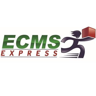 株式会社ECMSジャパンのロゴ